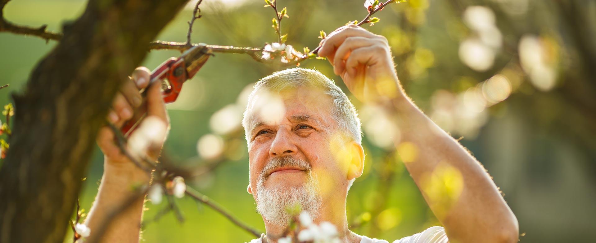 Gardeners Northolt